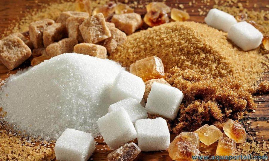Kombuchas, DTOX et sucres